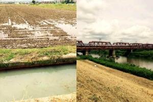 水田から堤防