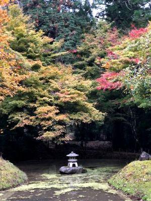 常照皇寺前池