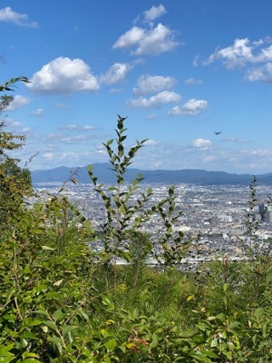天王山への登り道見晴台